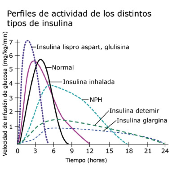 5.- La insulina - Asociación de Diabéticos de Ferrolterra